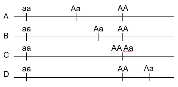 Rodzaje współdziałania alleli